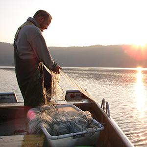 Fischer auf dem Laacher See